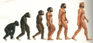 uomo: evoluzione